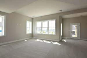 grey wall to wall carpeting lower level room